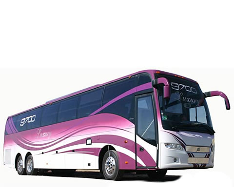 Daily basis Bus Rental